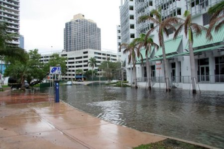 Miami Beach tidal flood